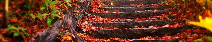 automneban